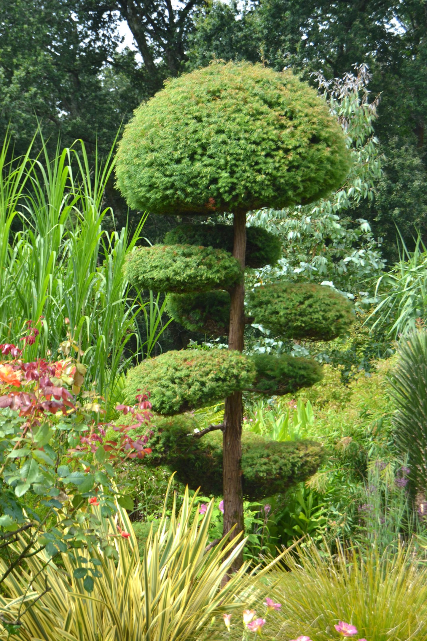 jardin remarquable dans les landes